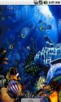 Blue Dolphins Live Wallpaper screenshot 2/4