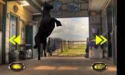 Horse Jumping 3D screenshot 6/6