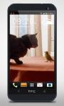 Parrot and Cat Friends LiveWP screenshot 3/6
