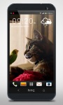 Parrot and Cat Friends LiveWP screenshot 4/6