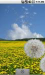 Flower Fields: Dandelions FREE screenshot 1/3