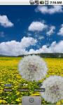 Flower Fields: Dandelions FREE screenshot 2/3