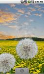 Flower Fields: Dandelions FREE screenshot 3/3