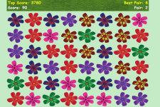 Flower Show screenshot 2/3