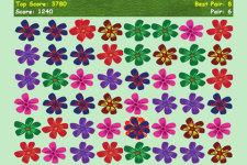 Flower Show screenshot 3/3