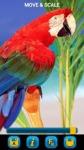 Birds Wallpapers by Nisavac Wallpapers screenshot 3/5