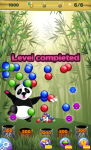 Panda Pop Shooter screenshot 4/6