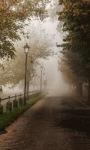 Foggy Rain Live Wallpaper screenshot 1/3