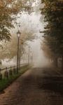 Foggy Rain Live Wallpaper screenshot 3/3