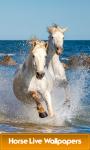 Horse Live Wallpapers Best screenshot 1/6