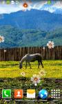 Horse Live Wallpapers Best screenshot 3/6