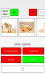 Learn Hungarian words screenshot 2/3