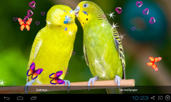 3D Cute Bird Live Wallpapers screenshot 2/4