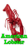 American Lobster screenshot 1/3