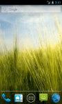 Rainy Grass Live Wallpaper screenshot 1/4