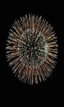 Fireworks Sparkle Live Wallpaper screenshot 1/3