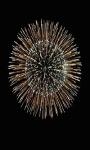 Fireworks Sparkle Live Wallpaper screenshot 3/3