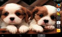 Ultimate Puppies Live Wallpaper screenshot 3/6