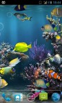 3d Live Fish Wallpaper For Galaxy screenshot 2/6