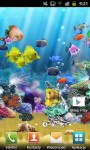 3d Live Fish Wallpaper For Galaxy screenshot 3/6
