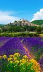 Lavender HD Wallpaper - Mindblowing screenshot 1/4