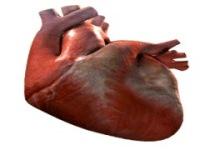 Heart Beating Live wallpape screenshot 1/6