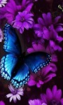 Purple Flower Butterfly Live Wallpaper screenshot 1/3