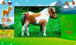 Pony puzzles screenshot 4/6