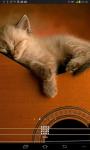 Cat Music Live Wallpaper screenshot 1/5