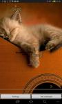 Cat Music Live Wallpaper screenshot 2/5