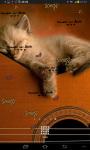 Cat Music Live Wallpaper screenshot 5/5