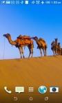 Sahara Caravan Live Wallpapers screenshot 2/4