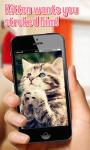 Pat the cat Simulator screenshot 1/3