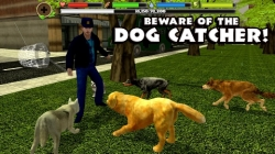 Stray Dog Simulator excess screenshot 1/6