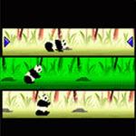 Panda Bear Free screenshot 2/2