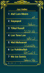 Holy  Quran 16 lines per page screenshot 3/6