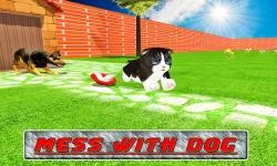 Cat Craze 3D screenshot 2/4