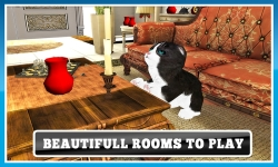Cat Craze 3D screenshot 3/4
