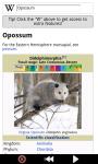 Funny Opossum : Loving Animals screenshot 3/6
