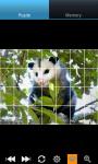 Funny Opossum : Loving Animals screenshot 4/6