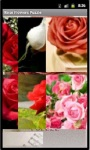 Rose Flowers Puzzle screenshot 4/5