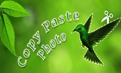 Copy Paste Photo screenshot 1/6