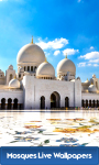 Mosques Live Wallpapers Free screenshot 1/6