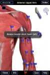 The Muscle System Pro screenshot 1/1