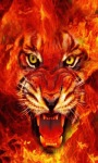 Fire Tiger Live Wallpape screenshot 1/3