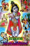 krishna Janmashtami Celebration screenshot 1/4