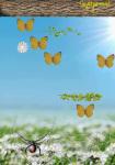 Butterfly Hunter screenshot 5/6