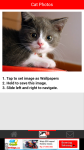 Cat Photos screenshot 3/6