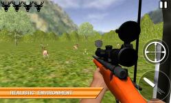 Sharp Animal Hunter - Forest screenshot 5/6