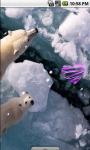 Cool Polar Bear Live Wallpaper screenshot 3/4